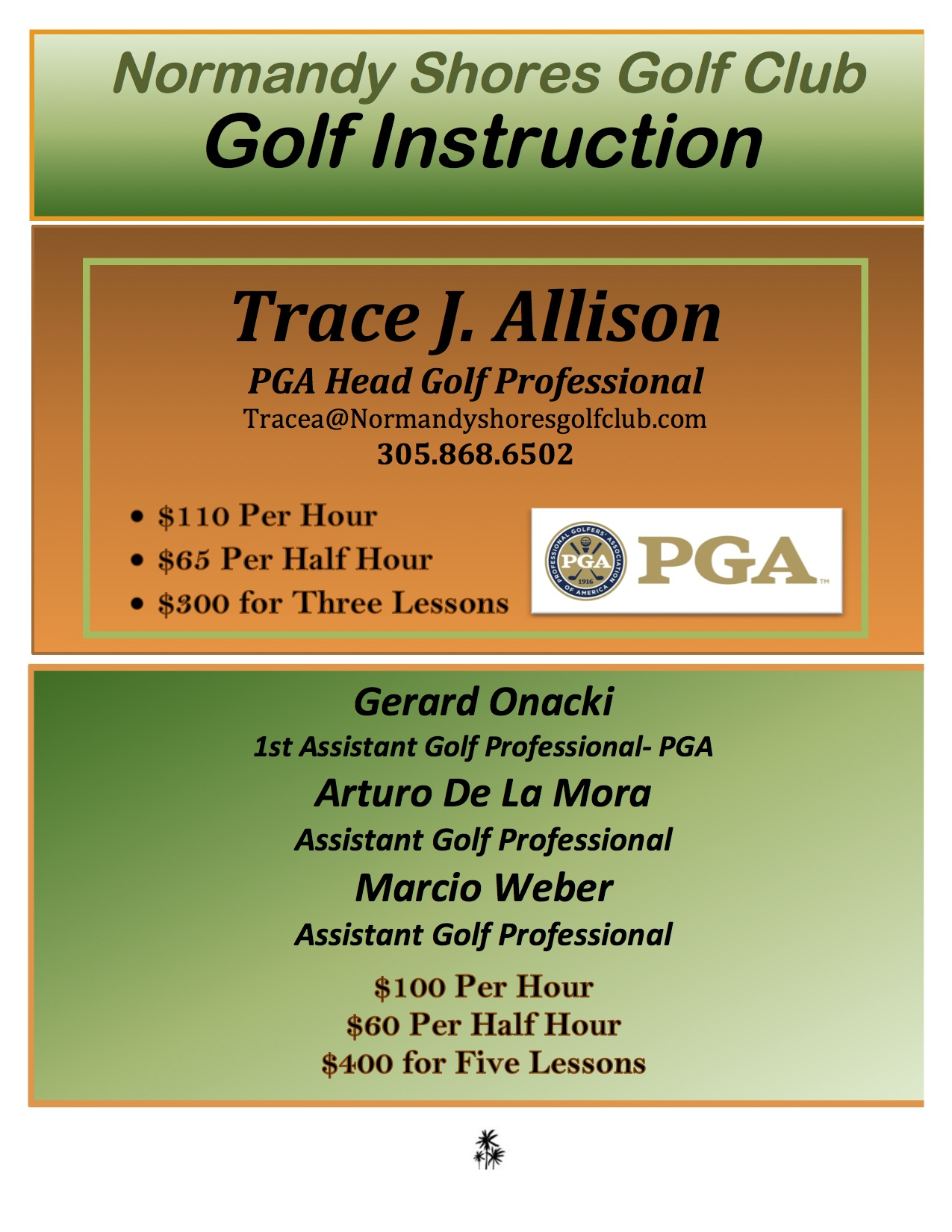 Golf lesson flyer New 2